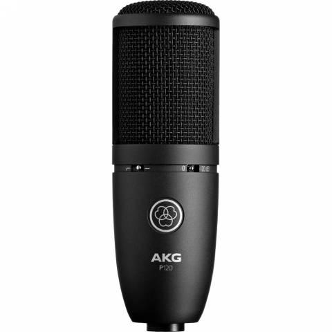 Micro AKG P120